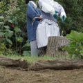 Pépita et Pépito, mannequins à découvrir à Sougé 41800